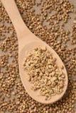 木的匙子 荞麦粥 谷物新芽 抽象背景褐色排行照片 免版税图库摄影