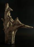 木的对象 免版税库存照片