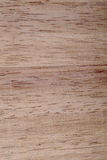 木的接近的纹理 免版税库存图片