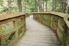 木的桥梁 库存照片
