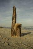 木的椅子 免版税图库摄影