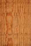 木的模式 图库摄影