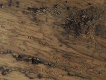 木的毛面 免版税库存图片