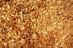 木的生物量 免版税库存图片