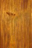 木的盘区 库存图片