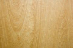 木的背景 免版税图库摄影