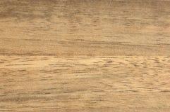 木的背景 库存照片