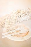 木盘集合和水稻 库存图片