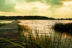 木码头在南卡罗来纳日落的低地国家沼泽与绿草 免版税库存图片