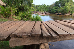 木码头特写镜头-在密林风景的河沿 库存图片