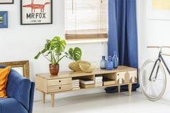 木碗柜的植物在平展内部的海报下与自行车 图库摄影
