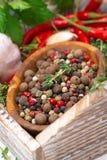 木碗用被分类的干胡椒,新鲜的草本,大蒜 免版税库存照片