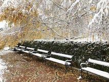 木积雪的长凳在冬天索非亚 免版税库存照片