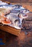 木箱冰用被分类的鲜鱼填装了 免版税图库摄影