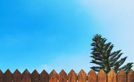 木篱芭和蓝天与树 库存图片