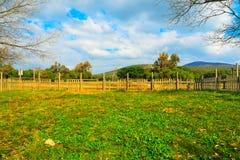 木篱芭在一个绿色草甸 库存照片