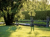 木篱芭 库存照片