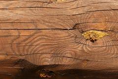 木粱 E ?? 木原木小屋墙壁自然色的horizonta 免版税图库摄影