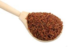 木红色米的匙子 免版税图库摄影