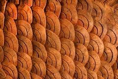 木纹理喜欢鱼鳞 免版税图库摄影