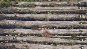 木纹理地板板条褐色 库存图片