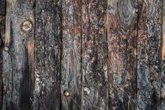 木纹理板条背景, 库存图片