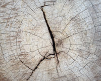 木纹理的破裂的部分背景的 免版税库存图片