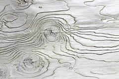 木纹理背景白色颜色 免版税图库摄影
