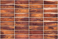 木纹理背景的汇集设置了02在白色背景 库存图片