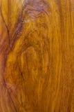 木纹理背景,理想对背景和纹理 免版税库存照片