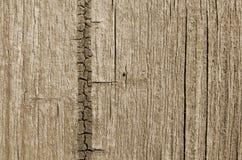 木纹理褐色,抽象 图库摄影