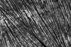 木纹理难看的东西背景 免版税库存照片