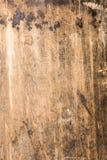 木纹理非常老橡木,粗砺的木头不是一致的 库存图片