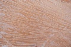 木纹理 新近地被锯的木头特写镜头纤维盖与 图库摄影