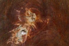 木纹理(从森林的树) 库存照片