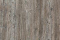 木纹理-灰色橡木 免版税库存照片