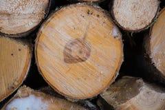 木纹理 背景老面板 免版税库存照片