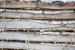 木纹理 背景老面板 免版税库存图片