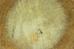 木纹理 免版税库存照片