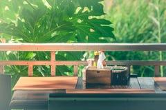 木组织箱子和在篮子盐、胡椒、牙签、调味汁在桌上与绿色树和阳光背景装饰 库存图片