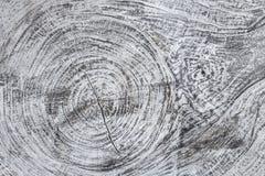木织地不很细灰色背景 木材料结构, 库存图片
