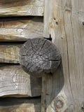 木结构木匠的工作 免版税图库摄影