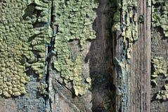 木老墙壁表面绘与绿色,黄色破旧的油漆,水平的难看的东西背景纹理,关闭  库存图片