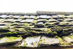 木老的屋顶 免版税图库摄影