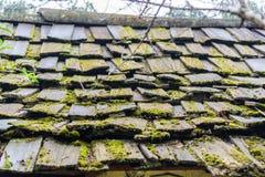 木老的屋顶 库存图片