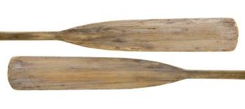 木老的桨 库存图片