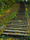 木老的楼梯 库存照片
