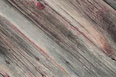 木老的纹理 葡萄酒土气木背景 照片文本 库存图片