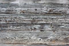 木老的纹理 库存照片