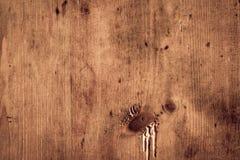 木老的纹理 免版税库存图片